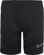 Шорты для мальчиков Nike Dri-FIT Academy