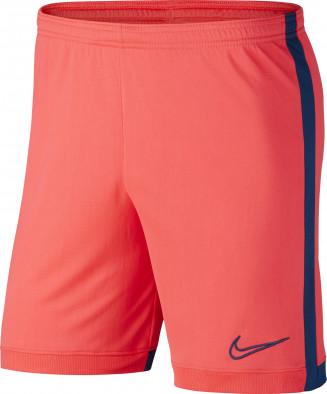 Шорты мужские Nike Dri-FIT Academy